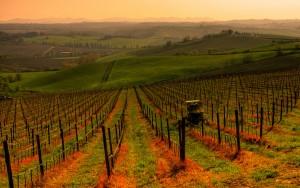 San-Casciano-in-val-di-Pesa-Tuscany-Service